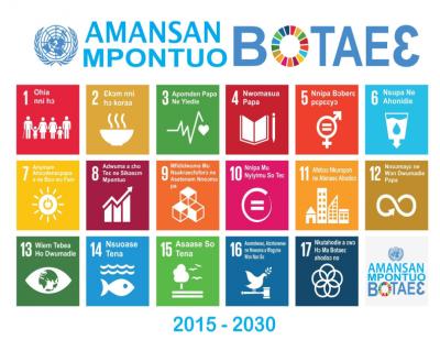 SDGs Twi portrait